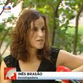 Inês Brasão